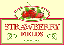 Strawberry Fields Cowbridge