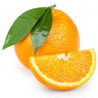 Image for Oranges - Small