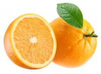 Image for Oranges - Large