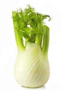 Image for Fennel